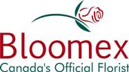 Bloomex logo color